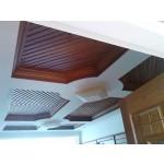 သပ္ရပ္လွပေသာ မ်က္နွာၾကက္မ်ား ( Ceiling )