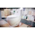 ဒီဇိုင္းဆန္းသစ္ေသာ ဘိုထိုင္ (Toilet )