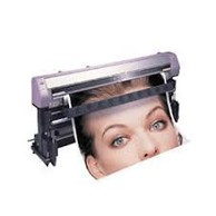 Vinyl & Sticker Printing Services