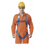Economic Full Body Harness
